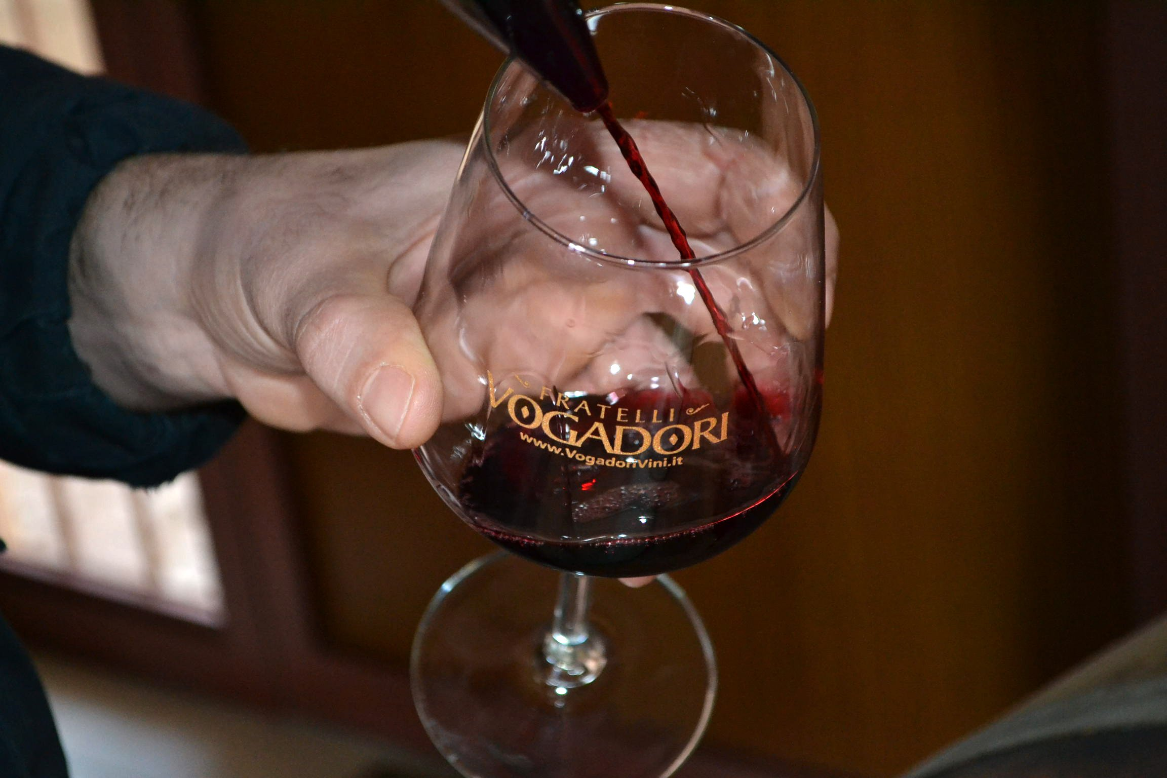 Valpolicella guided winetasting tasting