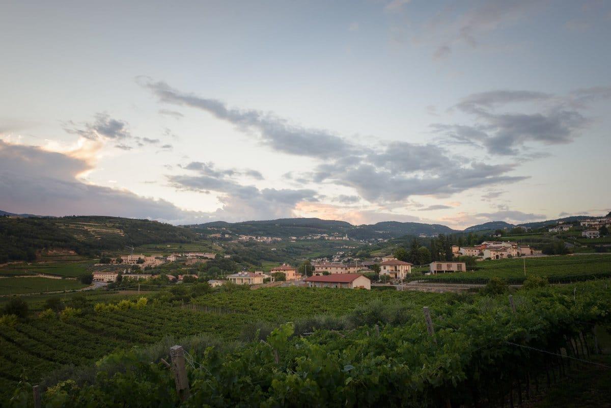 Valpolicella hills
