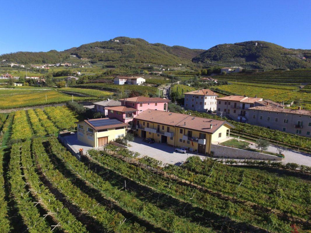 Our hill in Valpolicella