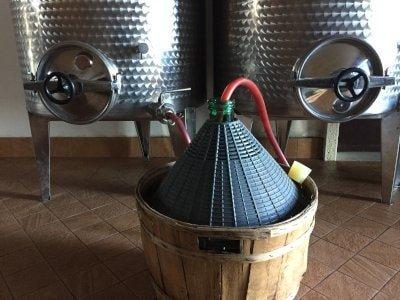 Imbottigliamento del vino